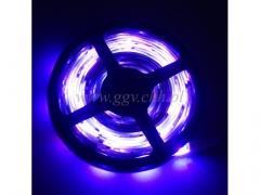 Tasma LED 5m/014rgb/20