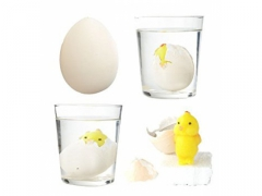 Jajko z niespodzianką - kurczak