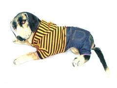 Ubranko dla psa 6