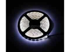 Tasma LED 5m/3998/40 COOL WHITE