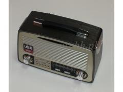 Radio wielofunkcyjne 3953/12