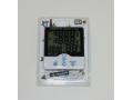 Termometr cyfrowy 6986/100
