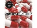 KAFAR DIX37 - Panaceum + ERO BONUS KĘKĘ KACZOR