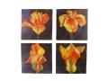 Obraz Dzielony 4 Elementy Lilie