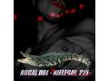 Rogal DDL - Nielegal 215