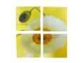Obraz Dzielony 4 Elementy