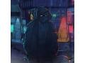 DEYS - Tape Of The Ninja