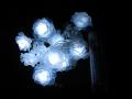 Lampki Trop Kwiaty