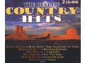 Country Hits 2cd ROGERS WILLIAMS CLINE GUITAR BYRD