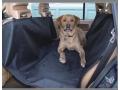 Mata do przewożenia psów na tylnym siedzeniu