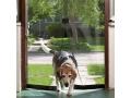 Moskitiera do drzwi z magnesami 210 x 90 cm