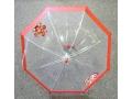Parasol dziecięcy przeźroczysty z gwizdkiem 50cm