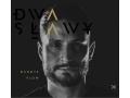 Dwa Sławy - Dandys Flow