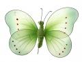 Motyl dekoracyjny 18cm